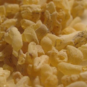 Gum Sandarac