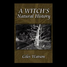 A-Witch's-Natural-History